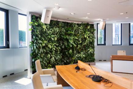 Mur végétal installé en intérieur